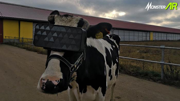 vr meningkatkan kualitas susu